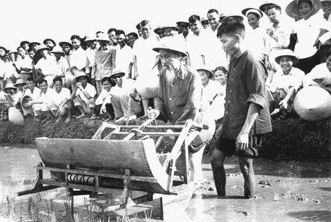 Bác Hồ đến thăm hội nghị phổ biến máy cấy công cụ cải tiến ở Từ Liêm, Hà Nội, tháng 7-1960