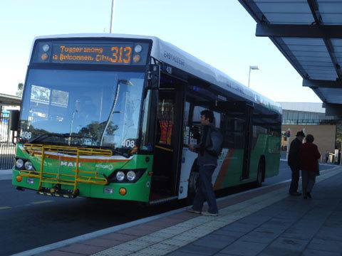 Hình 01: Hầu như tất cả mọi người ở Úc đều sử dụng xe buýt để đi làm, đi học, rất tiện dụng, tiết kiệm và bảo vệ môi trường. Đón xe buýt đi học là việc thường ngày của mình.