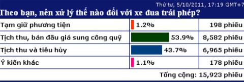 53% độc giả VnExpress đồng tình với phương án tịch thu, bán đấu giá sung công quỹ đối với xe đua. Ảnh chụp màn hình.