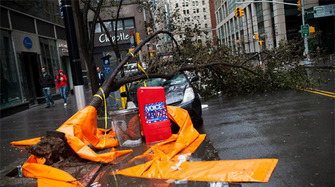 A car sits crushed by a tree in the Financial District on Tuesday.