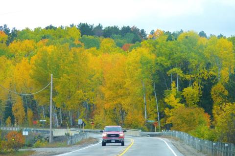 Thành lập năm 1893, Algonquin là công viên đầu tiên ở tỉnh (bang) Ontario, Canada nằm cách thủ đô Ottawa 300 km về phía tây và cách Toronto hơn 300 km về phía bắc.