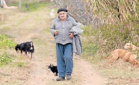 Tổng thống Jose Mujica