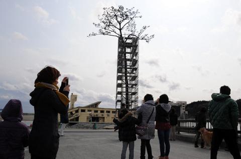 Người dân quan sát một cây thông