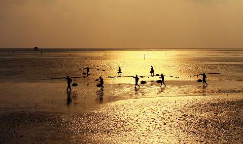 Biển sớm