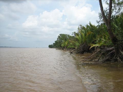 Sông và Phù Sa