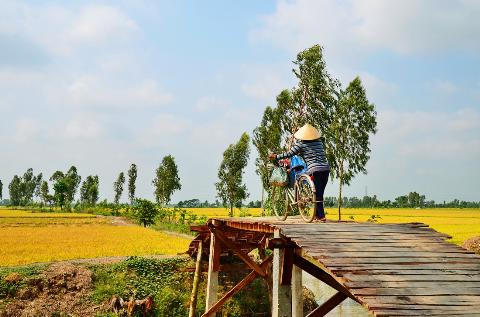 Người phụ nữ thôn quê trở về nhà sau buổi chợ sáng