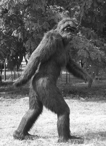 . Quái vật khổng lồ Bigfoot. Trong suốt hàng thập kỷ qua, nhiều người khẳng định là đã nhìn thấy tận mắt những con quái vật khổng lồ, mình đầy lông lá và có hình dáng giống con người, được biết đến với cái tên Bigfoot ở vùng châu Mỹ. Tuy vậy, chưa từng có một xác chết nào của loài này được phát hiện dù bị săn bắn, bị xe tông hay chết theo tự nhiên. Đến bây giờ vẫn không có bằng chứng nào về răng hay xương của Bigfoot, tất cả đều được biết đến qua các nhân chứng và những bức ảnh rất mơ hồ về quái vật này. Mặc dù không thể hoàn toàn phủ nhận sự tồn của Bigfoot, khoa học có lẽ sẽ không bao giờ chứng minh được rằng những sinh vật như Bigfoot hay quái vật hồ Loch Ness tồn tại.
