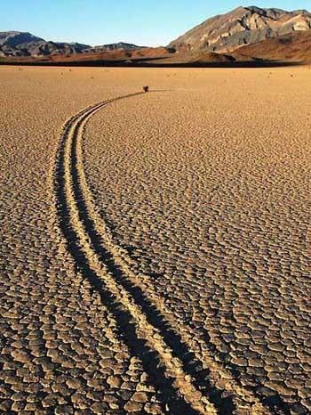 Trong 10 năm nghiên cứu, giáo sư đã theo dõi sự chuyển động của 162 hòn đá nằm rải rác trên bề mặt Playa. Nghiên cứu của bà cho thấy rằng một sự kết hợp hiếm hoi của mưa và gió khiến cho các tảng đá di chuyển. Một cơn mưa khoảng 12.700 mm, sẽ làm ướt và khiến cho bề mặt Playa trơn cộng với những cơn gió mạnh từ 80,5 km trở lên khiến cho các tảng đá lớn trượt dọc theo bùn trơn. Ở độ cao 12.139 m, gió mạnh có thể khiến cho những hòn đá ở Playa cuốn nhanh hơn với vận tốc khoảng 113 km/h. Thậm chí một cơn gió nhẹ cũng đủ di chuyển những hòn đá này.