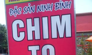 Những hình ảnh cực độc chỉ có ở Việt Nam (phần 92)