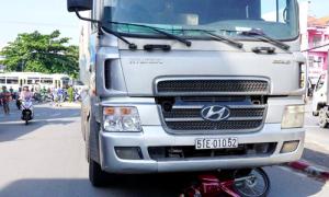 Hai vợ chồng cùng chú chó chết thảm dưới bánh xe tải