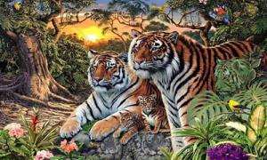 Có bao nhiêu con hổ trong bức tranh này?