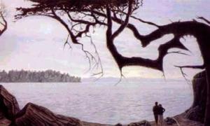 Nhiều người không nhìn thấy ước mơ của đôi vợ chồng ẩn trong bức ảnh này