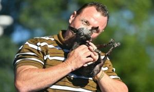 Chó xấu xí nhất thế giới được thưởng 1.500 USD