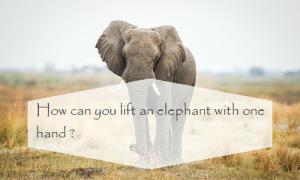 Câu đố tiếng Anh khiến bạn phải bật cười khi xem đáp án