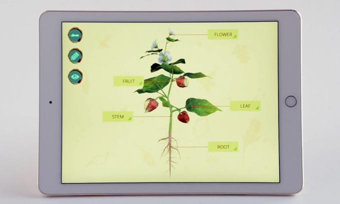 Ứng dụng công nghệ tương tác thực tế ảo AR trong giáo dục