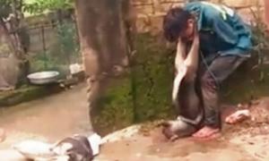 'Bắt cẩu tặc đeo xác chó lên cổ là xúc phạm nhân phẩm'