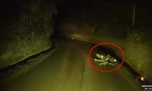 Tài xế nên làm gì khi thấy người nằm giữa đường lúc đêm vắng?