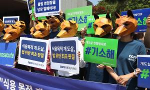 Chủ tịch tổ chức bảo vệ động vật Hàn Quốc bị tố cáo giết hàng trăm con chó