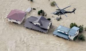 Việt Nam phối hợp tìm kiếm thủy thủ mất tích sau bão Hagibis
