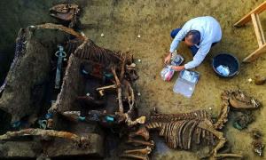 Cỗ xe ngựa chôn vùi dưới ngôi mộ 1.800 năm