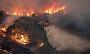 Vì sao cháy rừng Australia tồi tệ nhất nhiều thập kỷ?