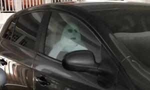 Tá hỏa khi thấy nữ chính phim kinh dị ngồi trong ôtô