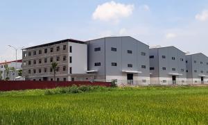 Nhà xưởng hơn 100 tỷ đồng xây không phép
