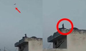 Khỉ lên sân thượng thả diều
