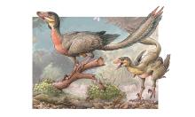 Phát hiện loài khủng long ăn thịt mới
