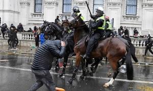 Những đội cảnh sát kỵ binh trên thế giới