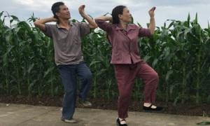 Vợ chồng nông dân nổi tiếng nhảy mọi lúc, mọi nơi