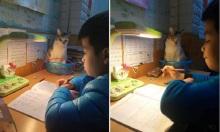 'Gia sư' ngả nghiêng khi dạy kèm học trò