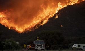 Ôtô hỏng làm bùng phát cháy rừng Mỹ