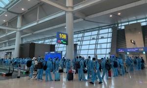 Hơn 300 người Việt từ Hàn Quốc về nước