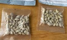 Mỹ, Trung hợp tác điều tra hạt giống lạ