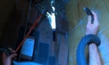 Rắn mamba đen trốn trong ngăn tủ