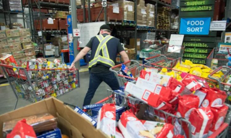 Người nghèo Canada nhận cứu trợ tôm hùm