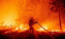Lính cứu hỏa chết khi dập đám cháy từ tiệc giới tính thai nhi