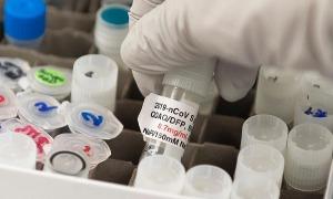 156 nước tham gia chương trình tiếp cận vaccine toàn cầu