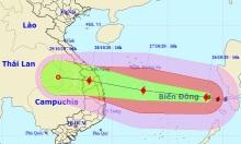 Bão Molave sẽ tạo sóng biển 8 m, mưa lớn ở miền Trung