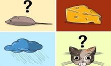 Thử tài suy luận với mèo, chuột và pho mát