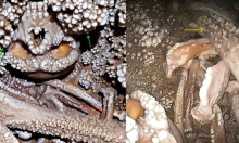 Hài cốt người đàn ông nằm dưới hố sâu 130.000 năm