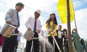 Bến Tre trồng 10 triệu cây xanh
