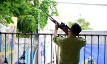 Bắn thuốc mê đàn khỉ trong khu dân cư Sài Gòn