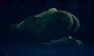 Thủy quái thống trị đại dương cách đây nửa tỷ năm