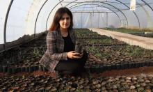 Người phụ nữ đặt mục tiêu trồng một triệu cây sồi