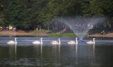 Hà Nội nghiên cứu tổ chức phố đi bộ hồ Thiền Quang