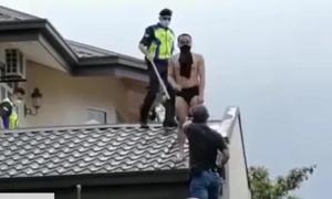 Tên trộm trốn trên mái nhà vì bị chó đuổi