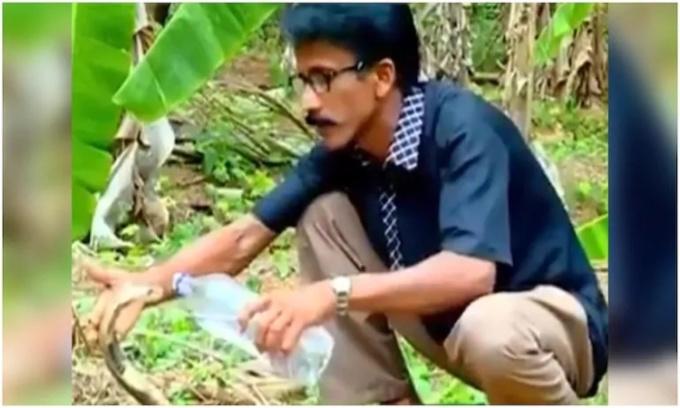 Người đàn ông cho rắn hổ mang uống nước