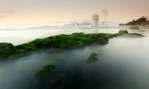 Bãi rêu xanh ở Nha Trang hút khách